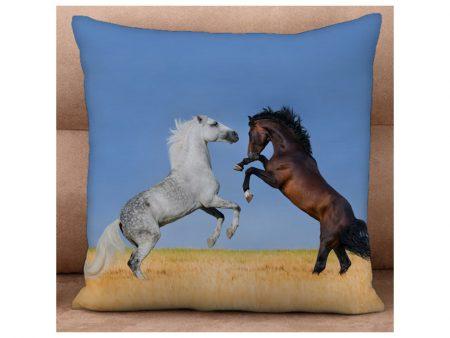 Battle for Supremacy Cushion cover