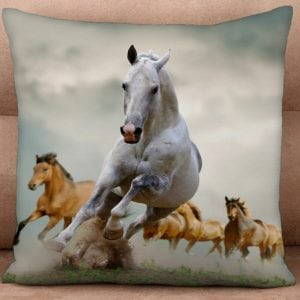 Cushion Cover - Leading Them Home