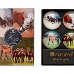 Horse Magnet Set Box