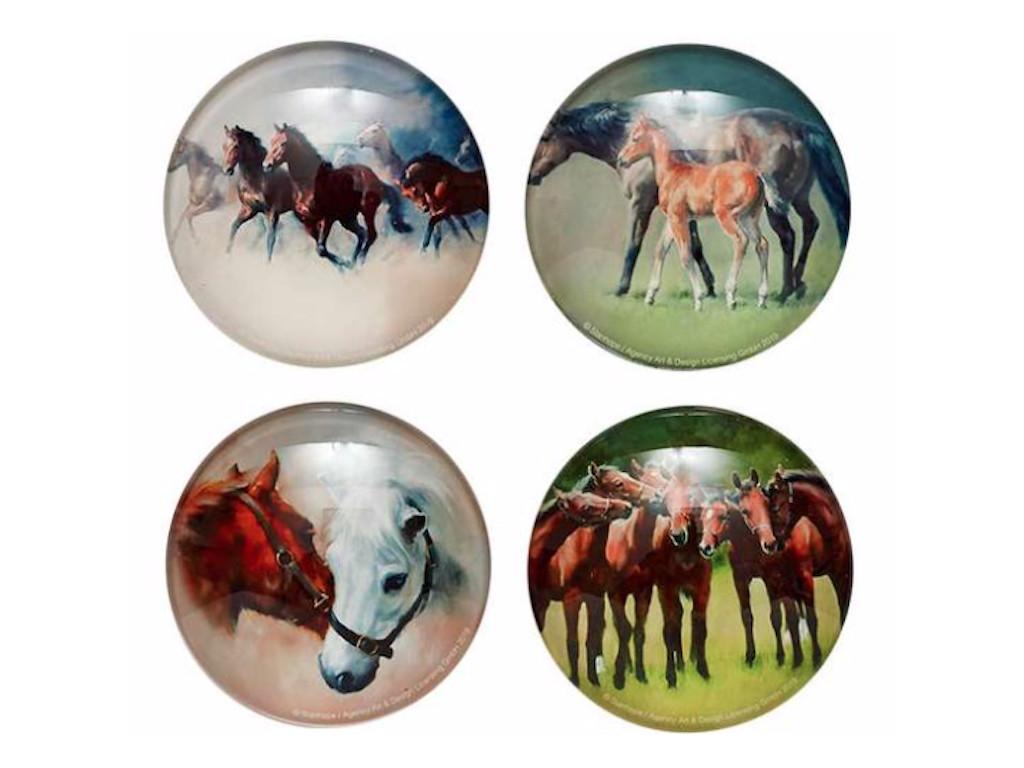 Horse Magnet Set