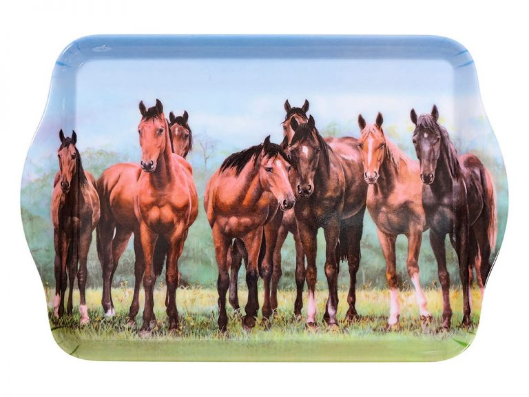 Beauty of Horses In The Pasture Scatter Tray