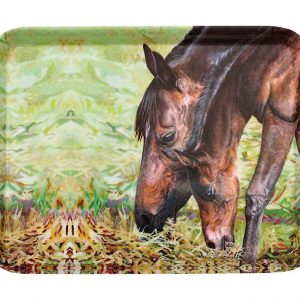 Beauty of Horses Morning Graze Scatter Tray